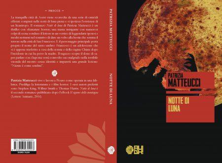 Notte di luna – di Patrizia Matteucci