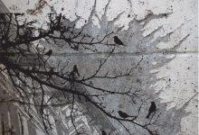 La cresta dell'upupa – di Daniele Borghi